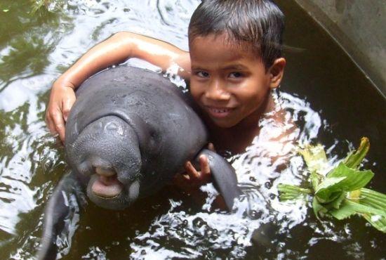 The Amazon Rescue Center
